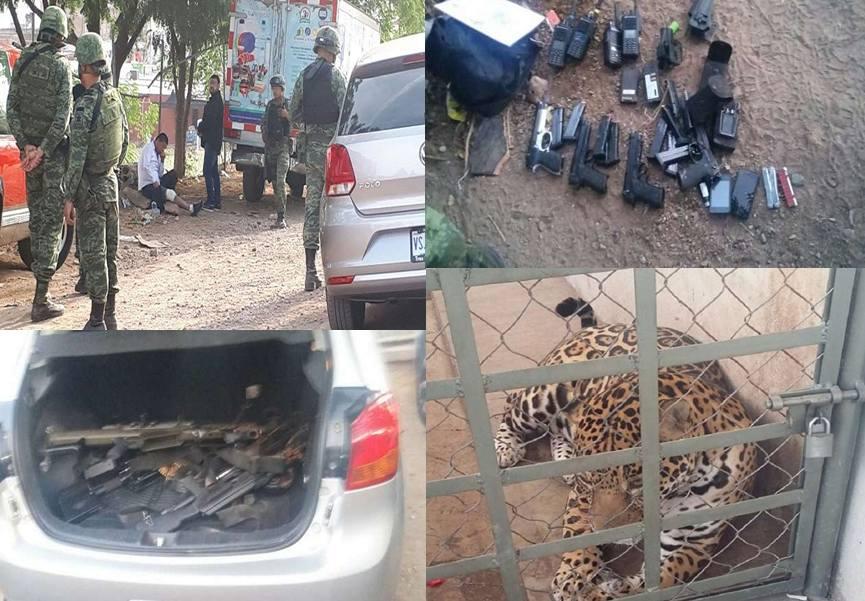 Capturan militares a siete personas y asegura armas, autos y un jaguar en Culiacán