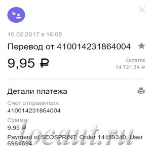 9.95 рублей