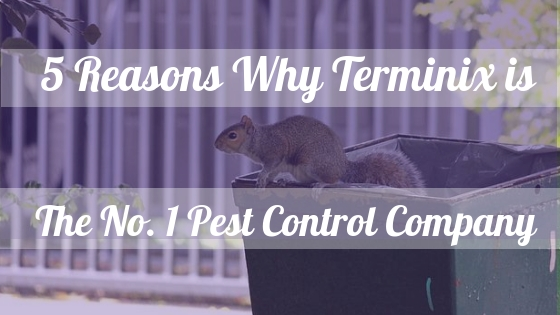 terminix, pest control company