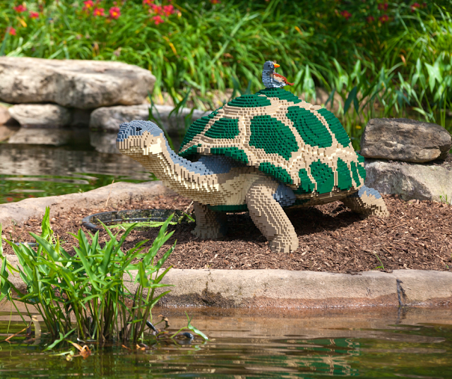 Lego tortoise with a finch enjoying a ride created by Sean Kenney. Image courtesy of The Morton Arboretum.