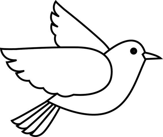 Tranh tô màu con chim bồ câu