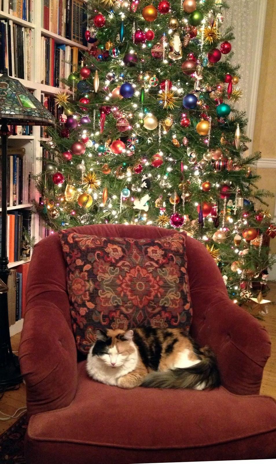 My best christmas holiday essay
