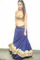 Malvika Raaj in Golden Choli and Skirt at Jayadev Pre Release Function 2017 ~  Exclusive 082.JPG
