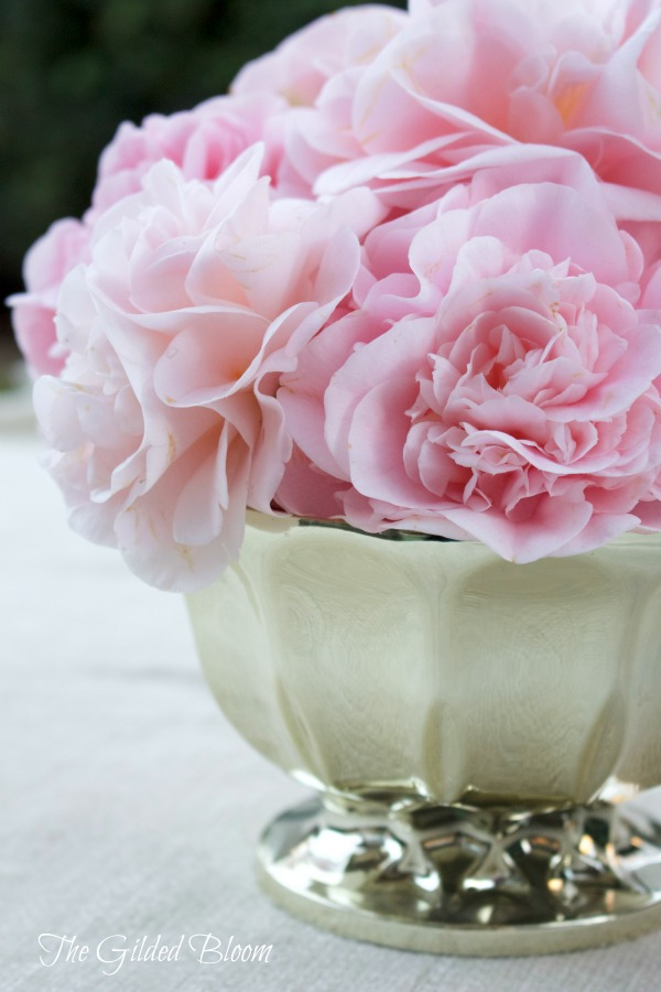 A Winter Camellia Arrangement www.gildedbloom.com #flowers