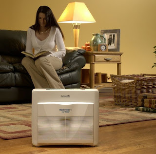 Home improvement cast -  Air Purifiers - Are They Worth the Buy?