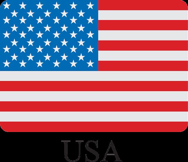 ABD Bayrağı Vektörel