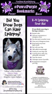 #Paws4Purple K9 Epilepsy Educational Program