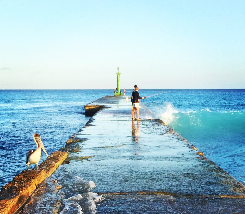 Kết quả hình ảnh cho kinh nghiệm du lịch Jamaica
