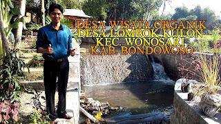 desa wisata organik lombok kulon bondowoso