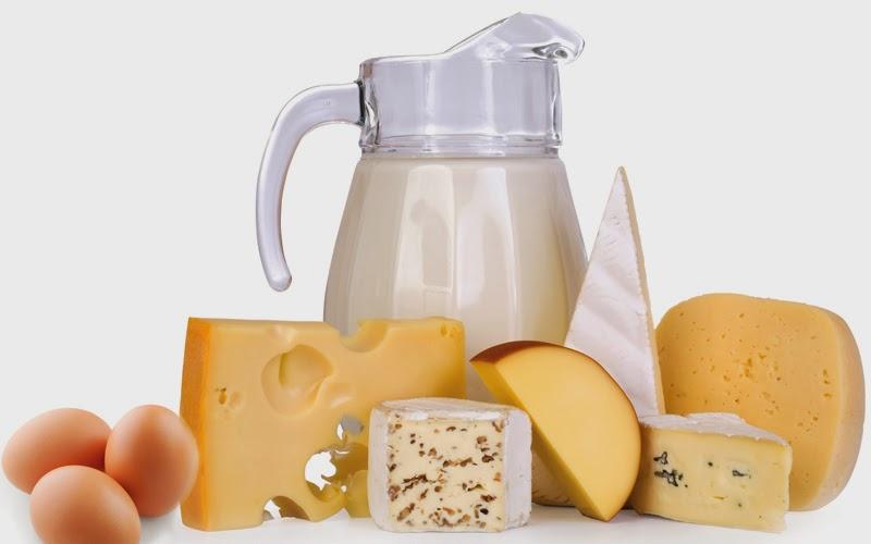 Leche, quesos, yogurt y huevos, fuentes de Calcio y Vitamina D en dietas ovolacteovegetarianas