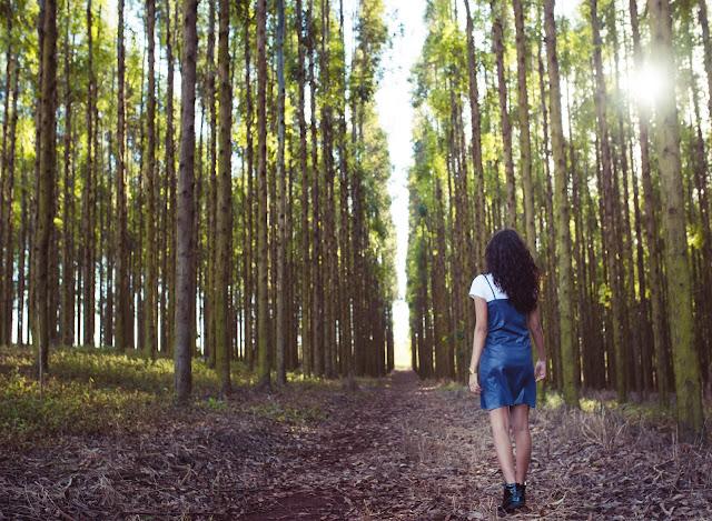 fotos tumblr floresta