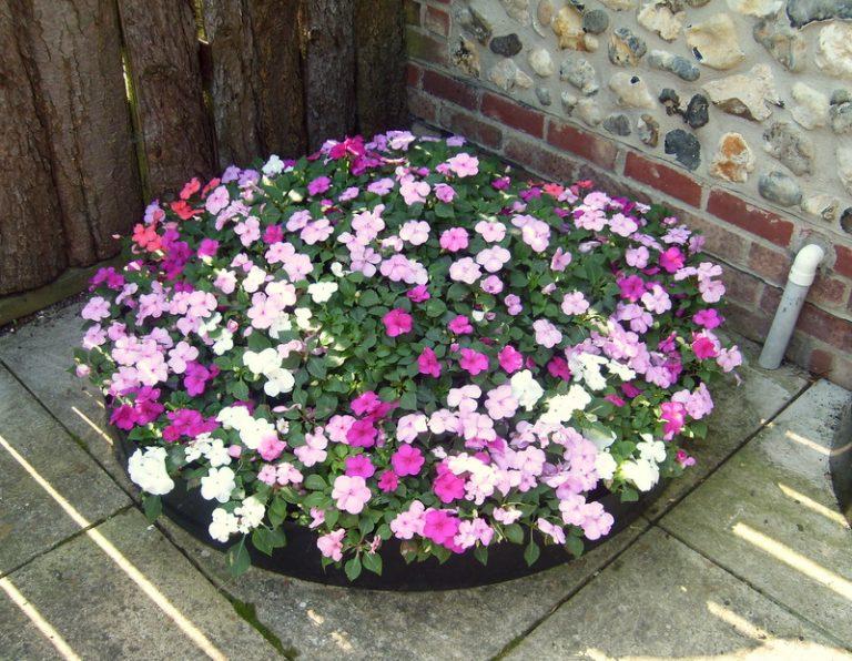 Diy ideas to make round flower beds decor units for Round flower bed ideas