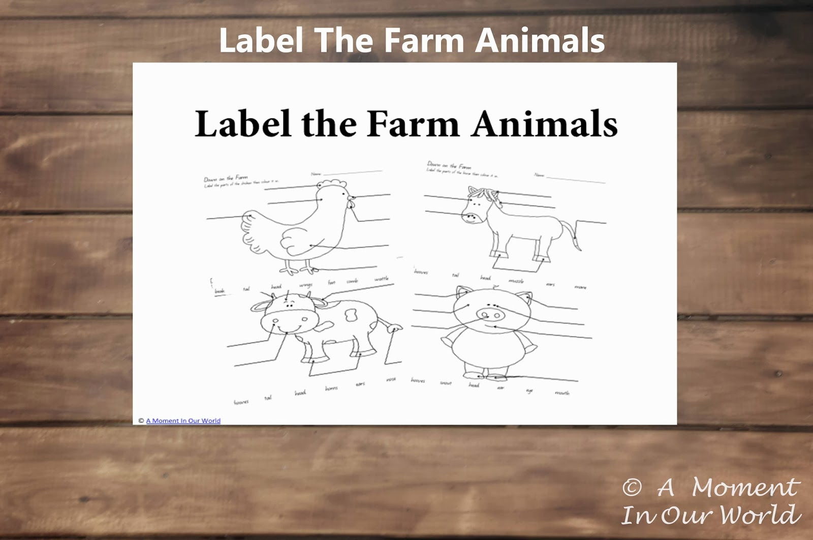 Label The Farm Animals