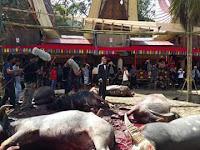 Film Perias Mayat Toraja Utara,Sulawesi Selatan