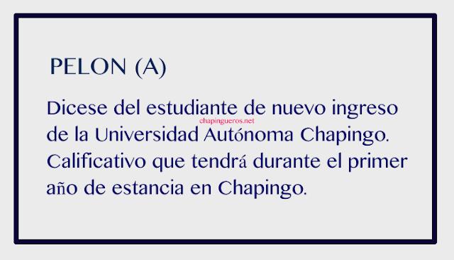 Pelon Chapinguero