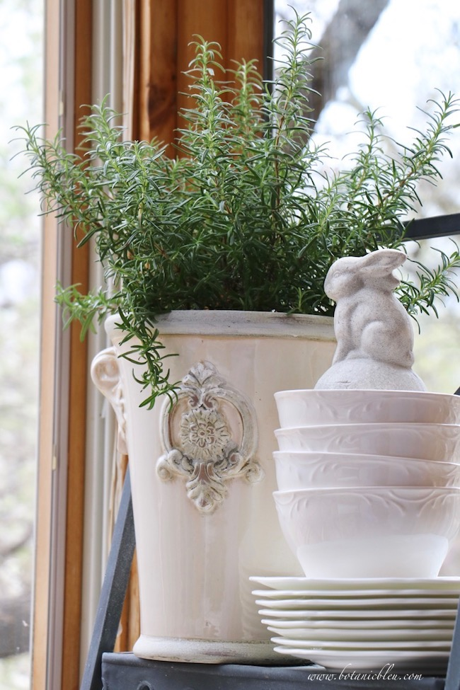 French Country Urn with Rosemary and White Ceramic Rabbit