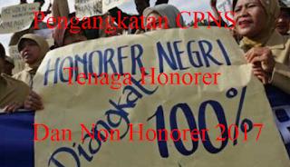 Pengangkatan CPNS Tenaga Honorer K2 Dan Non Honorer 2017
