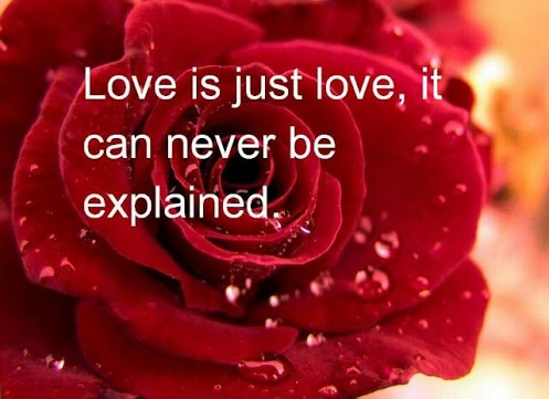 LOVE IS YOU AND ROSE IS MY HEART