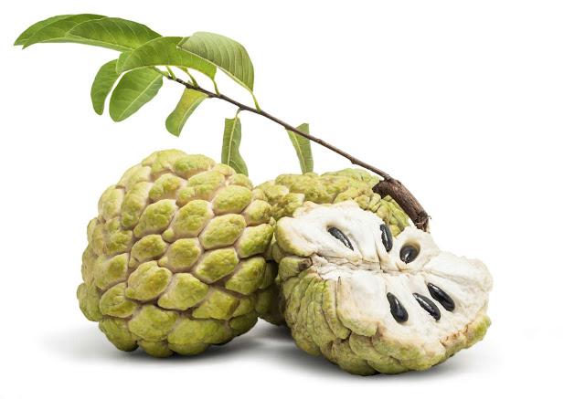 buah srikaya indonesia yang disukai bule