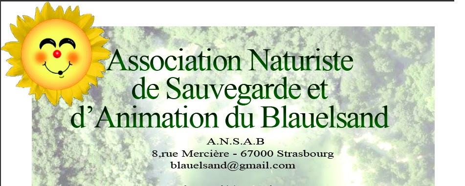 https://4.bp.blogspot.com/-7mra-pGxK9Q/T-x1RK0bDaI/AAAAAAAAABw/GBteSfPkqdQ/s1600/Signature-Blauelsand+(1).bmp