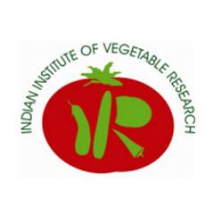 IIVR Recruitment 2017, www.iivr.org.in
