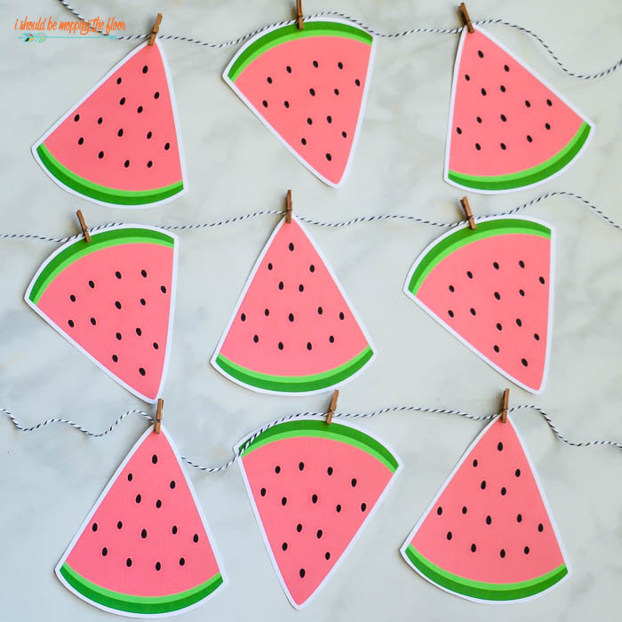 Watermelon Party Decor