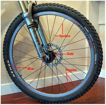 Different parts of a mountain bike wheel