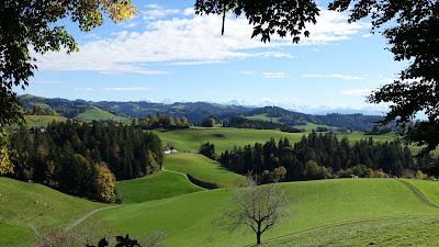 Am linken Bildrand: Baum aus Bild 3