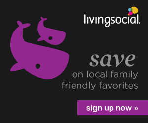 LivingSocial is offering an extra 20% off sitewide on activities, food & drink, beauty & spas, travel, gifts and more when you use promo code at online checkout.