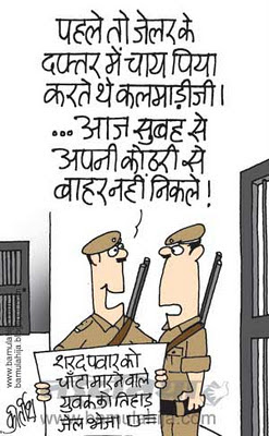suresh kalmadi cartoon, sharad Pawar cartoon, a raja, corruption cartoon, tihaad jail cartoon
