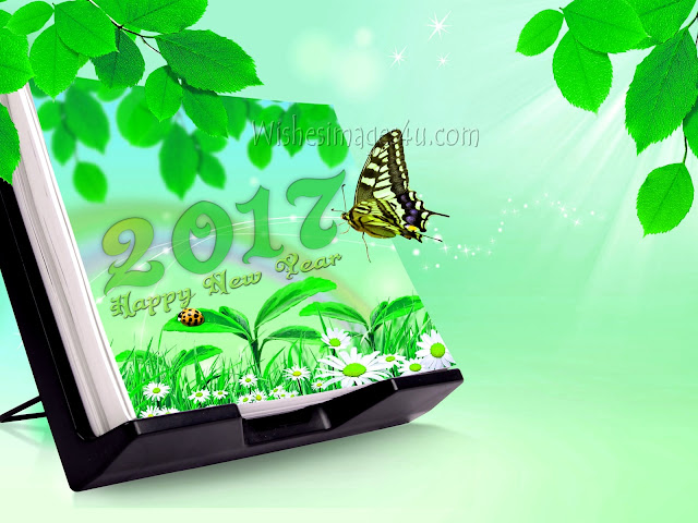 new year 2017 beautiful Nature photos download free