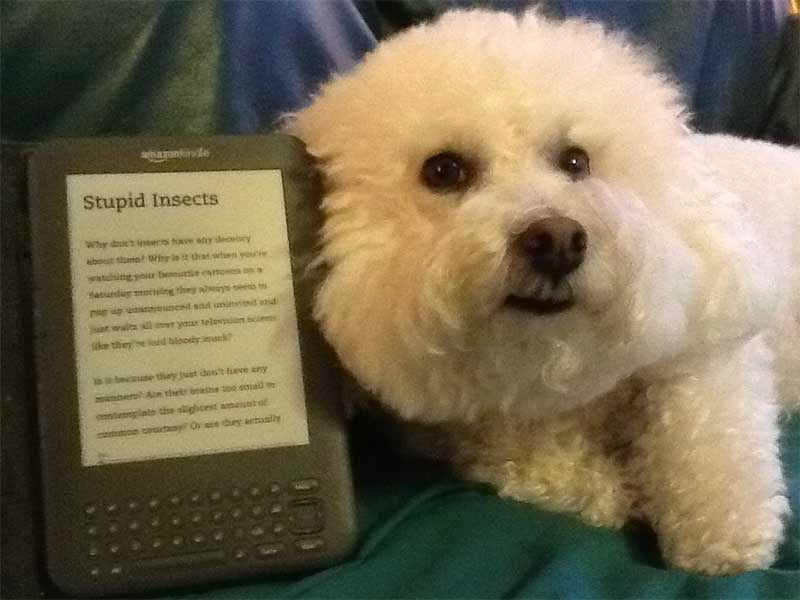 a dog reading a book on kindle