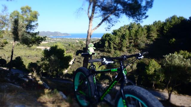 Biketouren am Meer Mallorca
