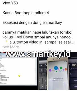 Smart Key dongle
