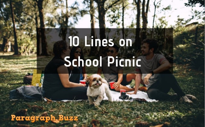 10 Lines on School Picnic I Enjoyed