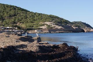 Cala es Cavallet - Sant Josep de sa Talaia (Eivissa)  per Teresa Grau Ros
