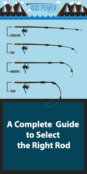 A complete guide to select right rod
