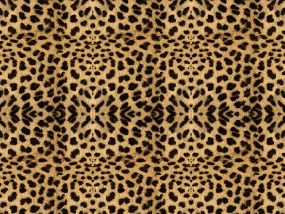 Cheetah Print HQ Wallpapers