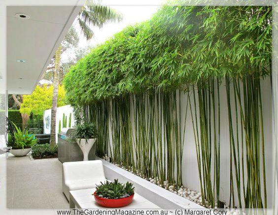 Immagini Di Giardini Moderni : Arredamento e dintorni: giardini moderni e minimalisti