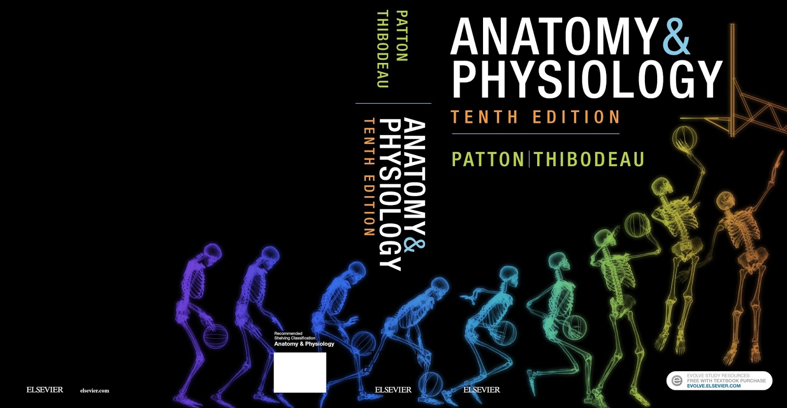Anatomy & Physiology: New 10th Edition of Patton\'s A&P textbook is ...