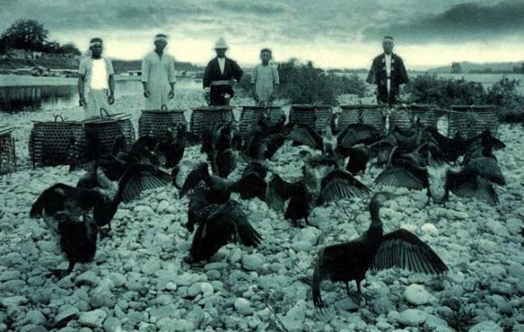 penangkaran hewan jaman dahulu