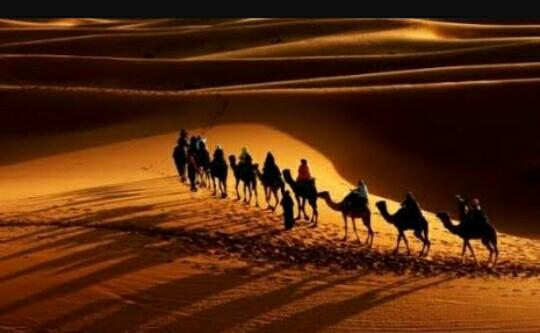 Kisah Tsa'labah bin Hatib yang zakatnya di tolak oleh Nabi Muhammad