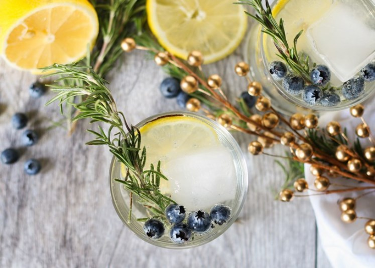 Lemon Blueberry Vodka Spritzer #summerdrink #vodka