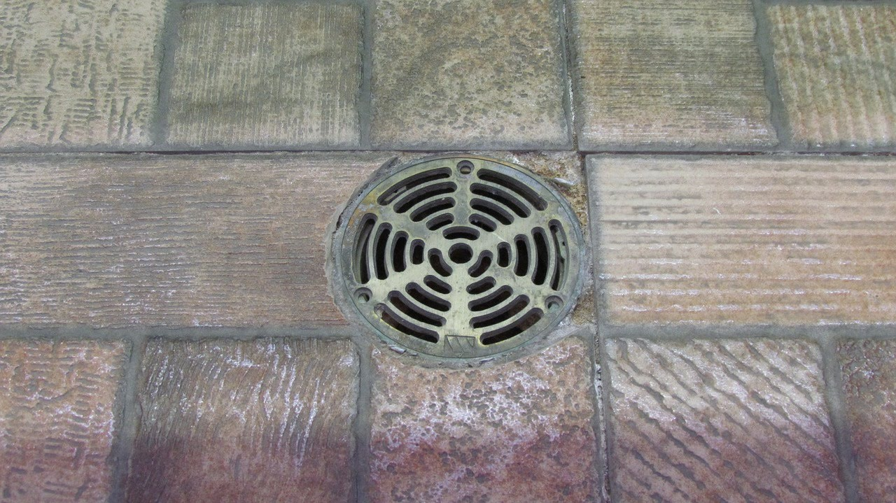 Easy Tips to Prevent Drainage Blockages