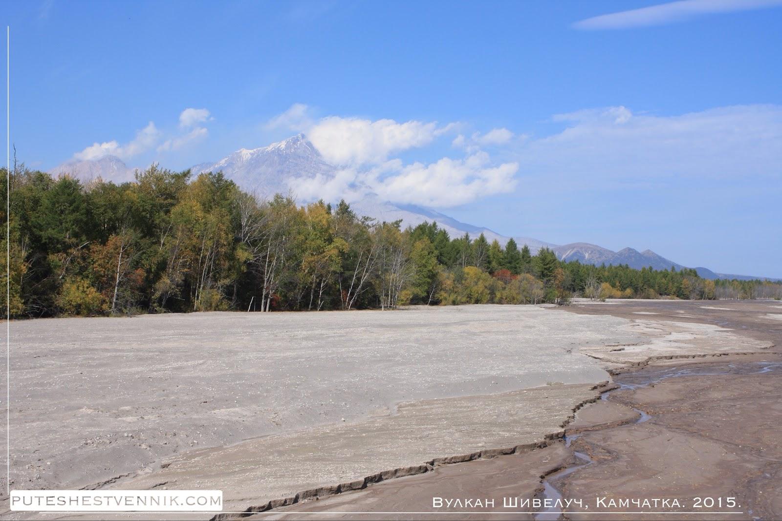 Вулкан Шивелуч на Камчатке