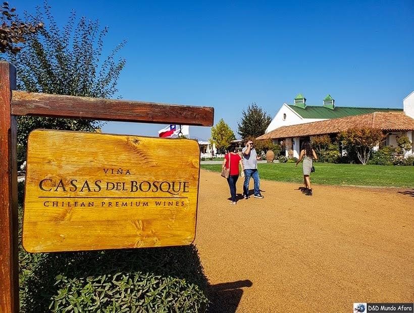 Vinícola Casas del Bosque - Diário de Bordo Chile: 8 dias em Santiago e arredores