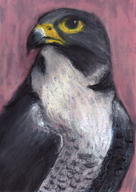 Rolling Artroom Oil Pastel Birds 7th-12th Grade