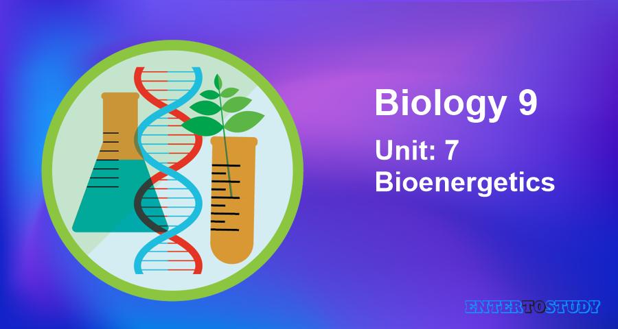 KIPS 9th Class Biology Notes Unit 7: Bioenergetics