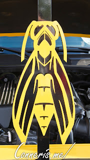 Dodge Challenger Yellow Jacket Hood Prop