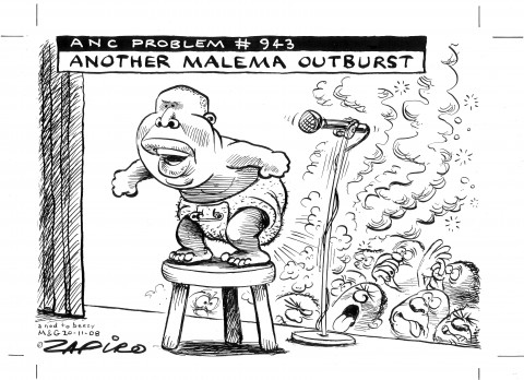 What is Happening in South Africa: Malema Linked to